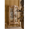 LUXURY living display cabinet